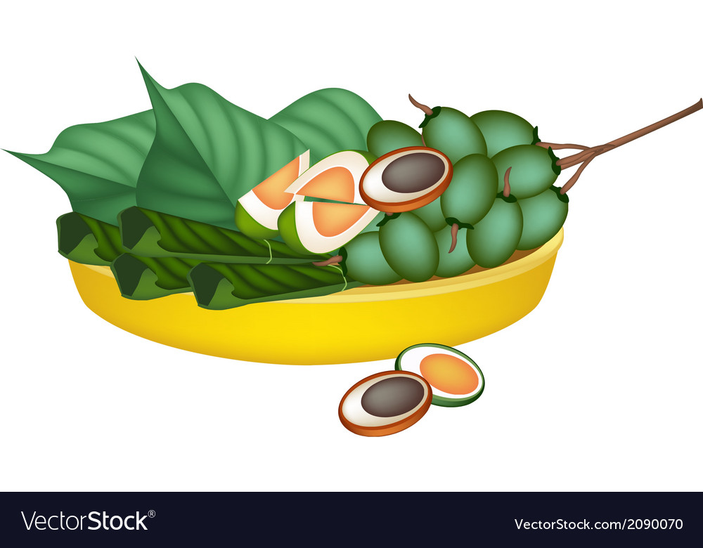 Ripe areca nuts and betel leaves on gold tray vector | Price: 1 Credit (USD $1)