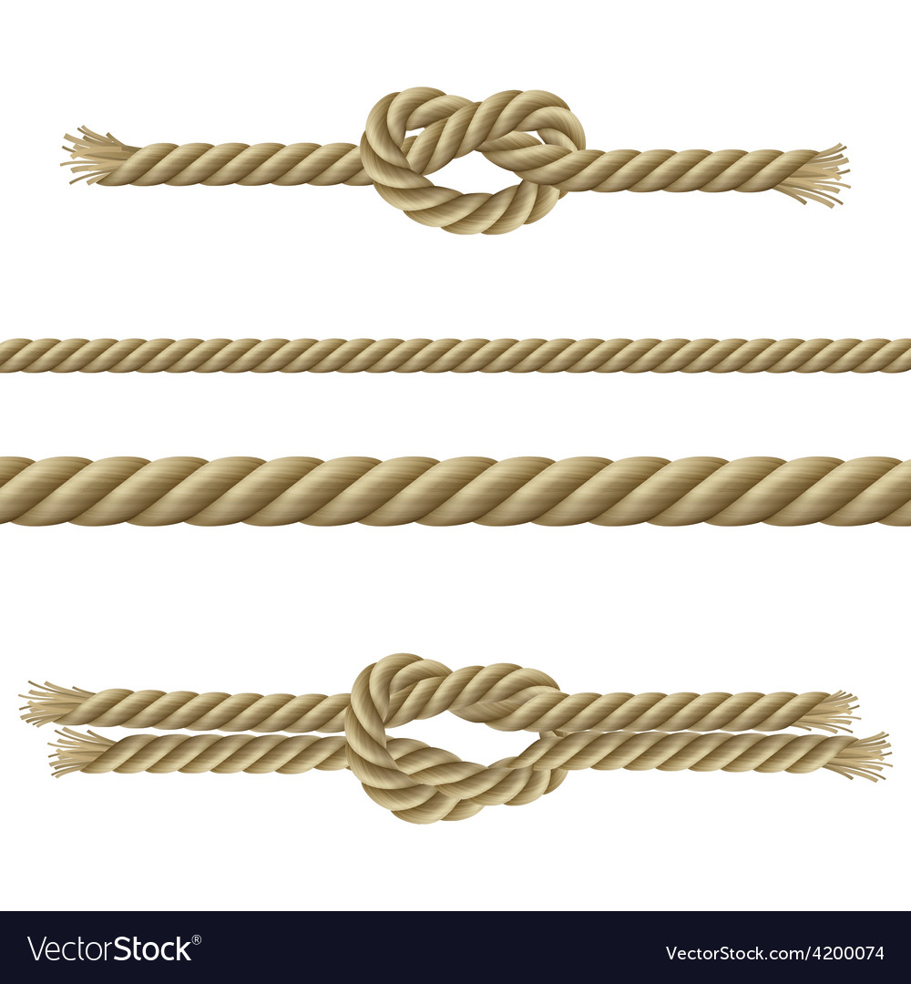 Ropes decorative set vector | Price: 1 Credit (USD $1)