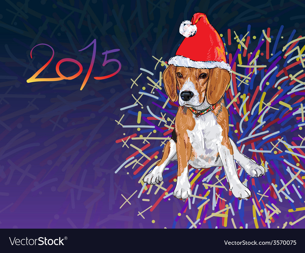 Beagle wear christmas hat with fireworks vector | Price: 1 Credit (USD $1)