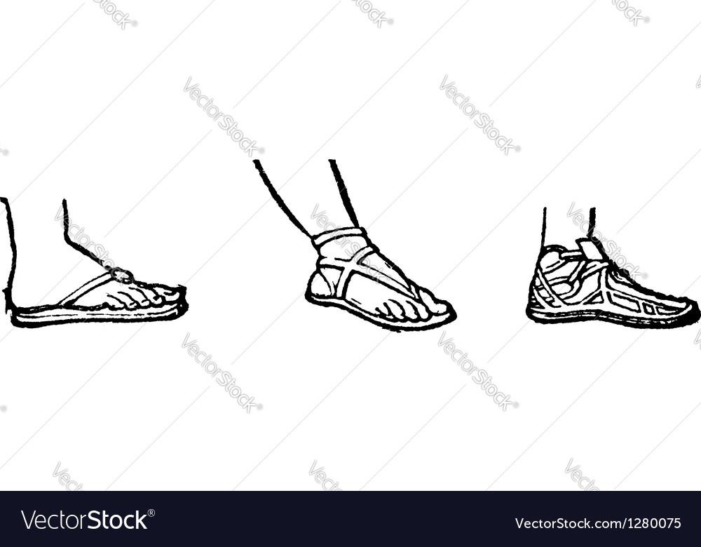 Sandal vintage engraving vector | Price: 1 Credit (USD $1)