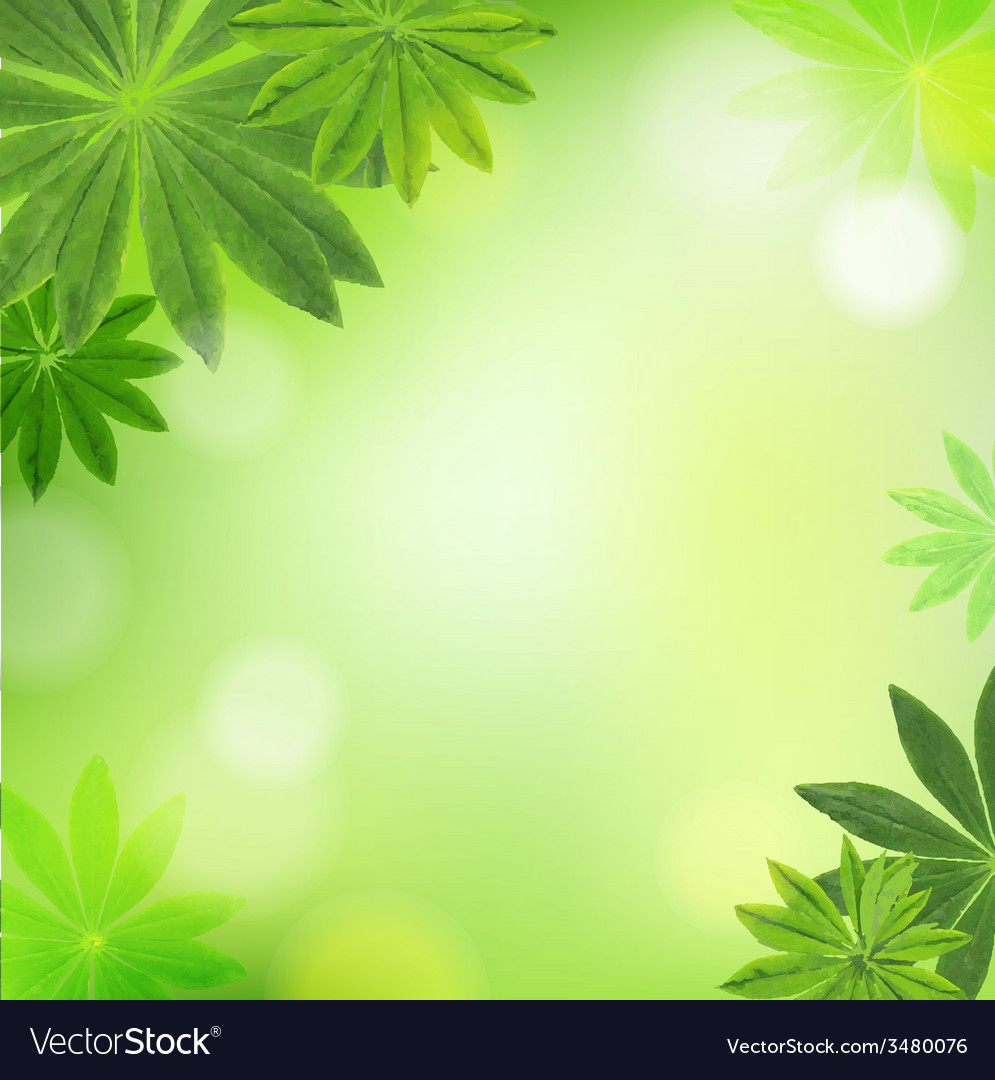 Leaves border vector | Price: 1 Credit (USD $1)