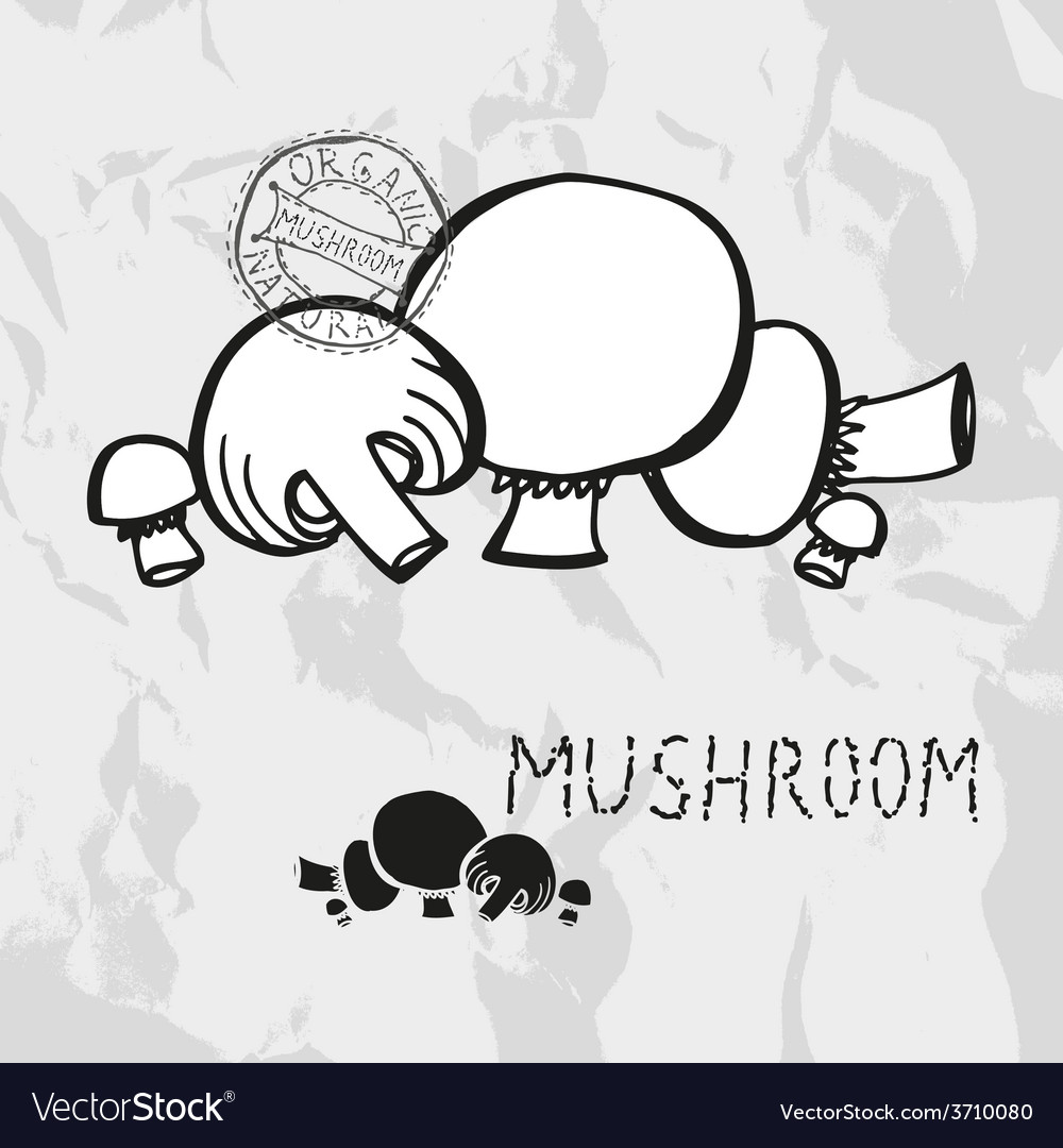 Hand drawn mushrooms vector | Price: 1 Credit (USD $1)