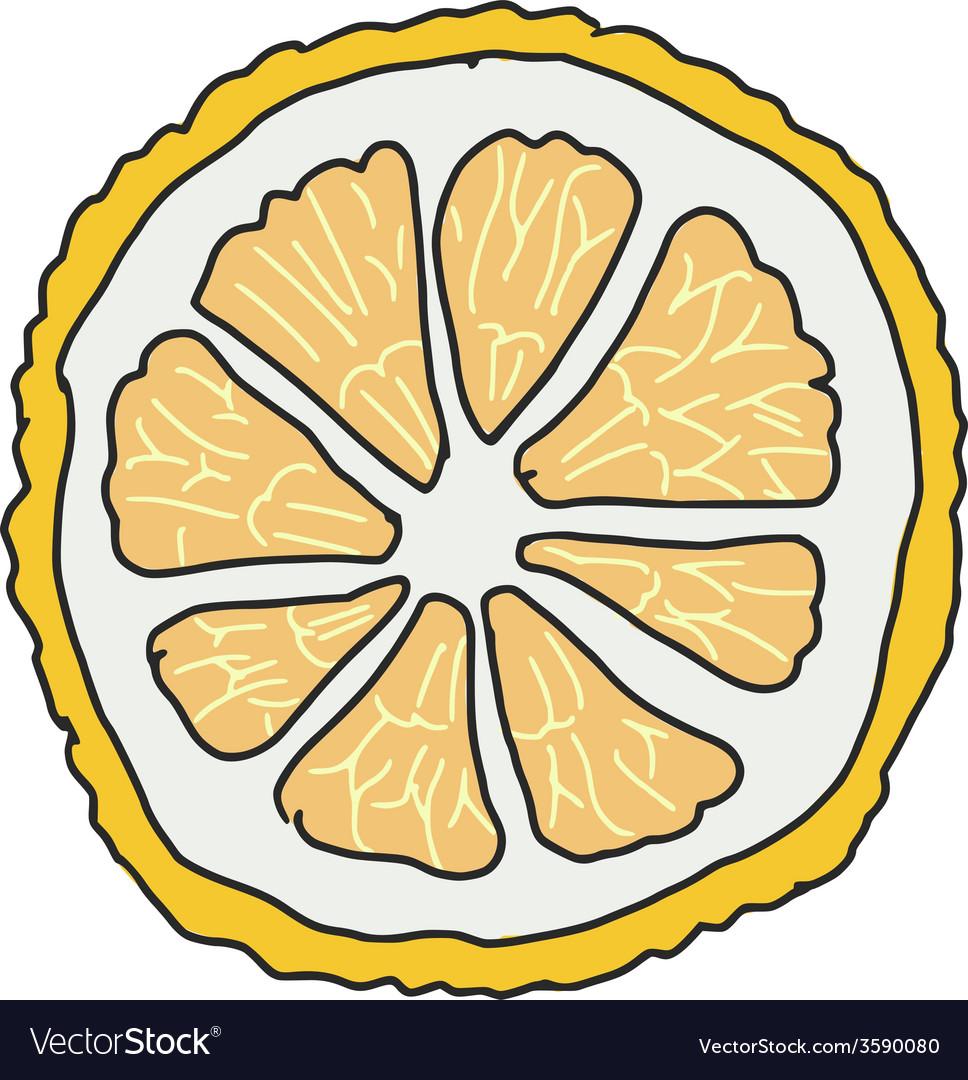 Slice of lemon vector | Price: 1 Credit (USD $1)
