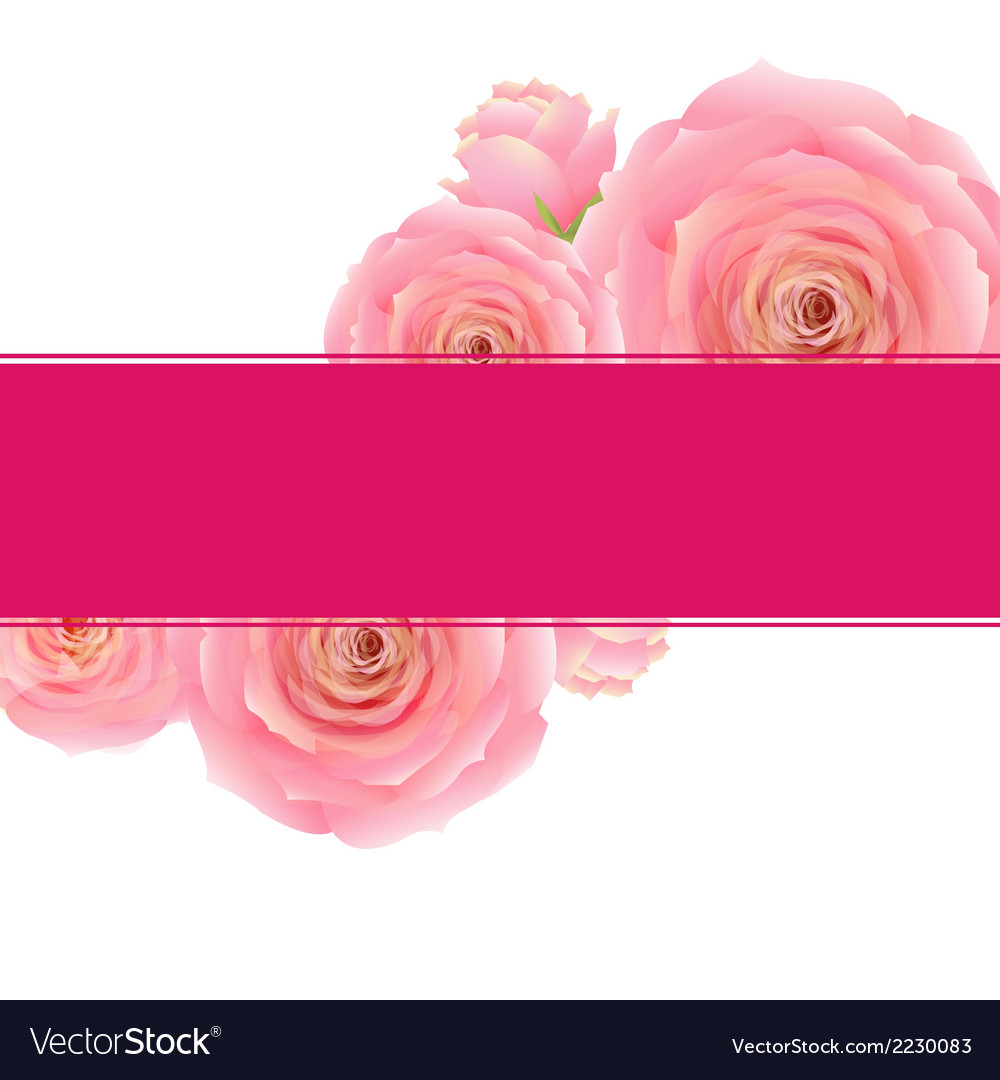 Pink rose banner vector | Price: 1 Credit (USD $1)