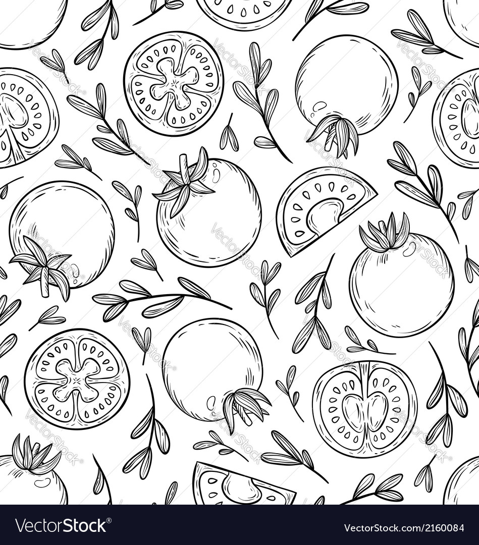 Sketched tomatoes pattern vector | Price: 1 Credit (USD $1)