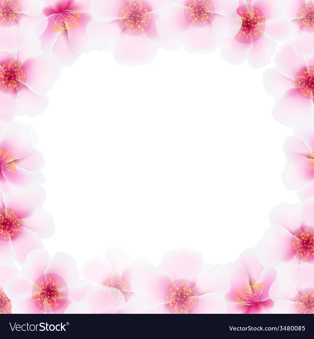 Cherry flower frame with blur vector | Price: 1 Credit (USD $1)