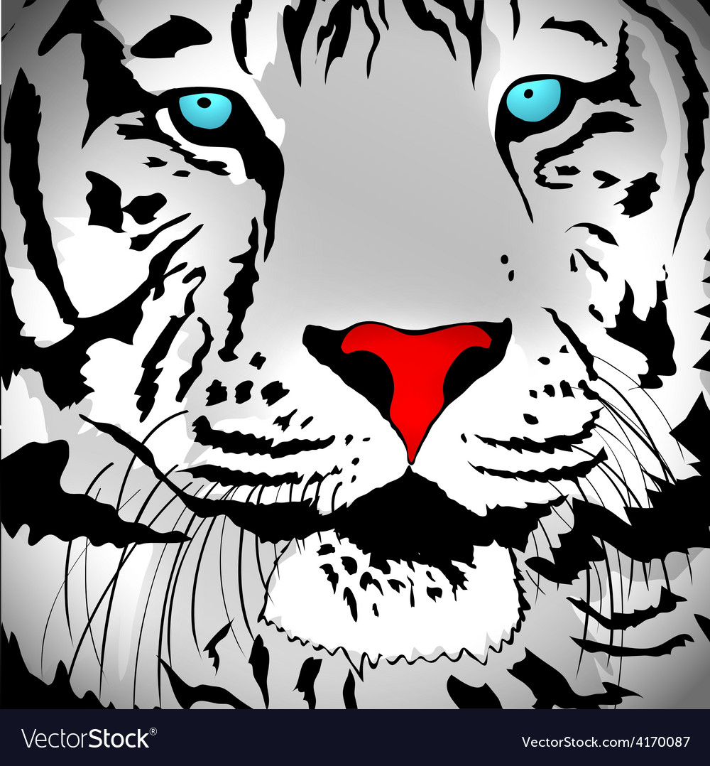 Abstract white tiger vector | Price: 1 Credit (USD $1)
