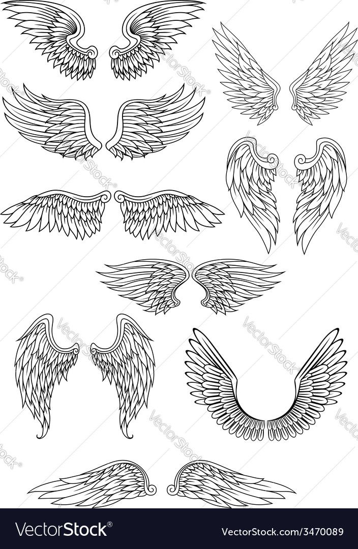 Heraldic bird or angel wings set vector | Price: 1 Credit (USD $1)
