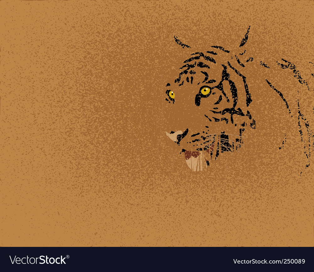 Tiger grunge vector | Price: 1 Credit (USD $1)