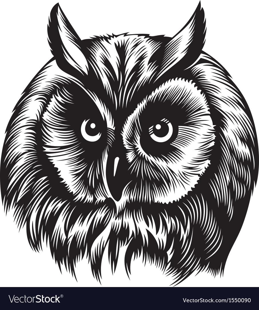 Owl head vector | Price: 1 Credit (USD $1)