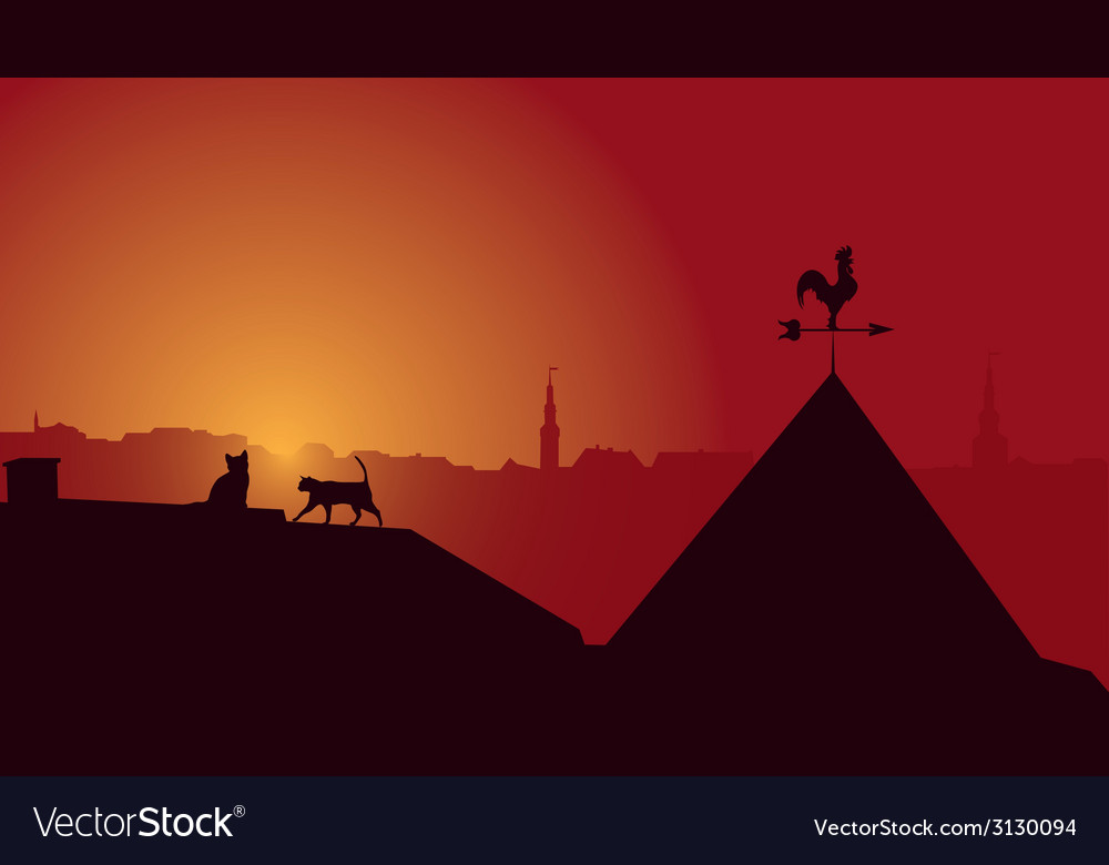 Cat and cat on a roof of the old house vector | Price: 1 Credit (USD $1)
