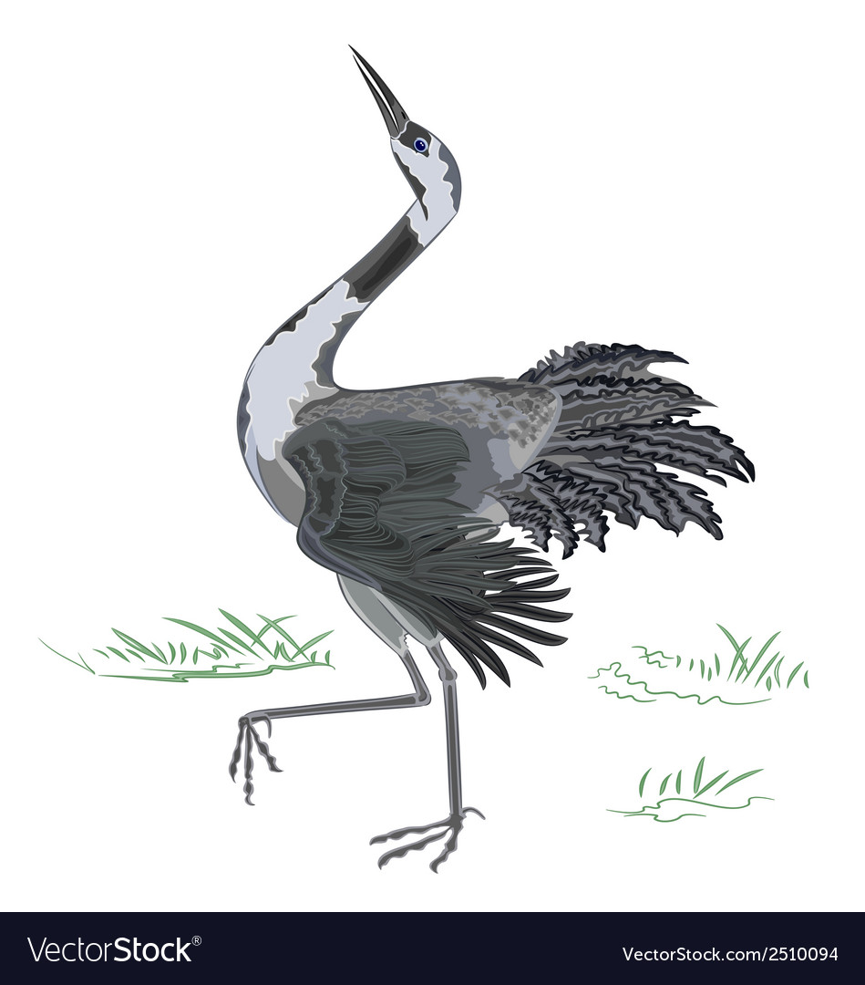 Dancing-crane vector | Price: 1 Credit (USD $1)