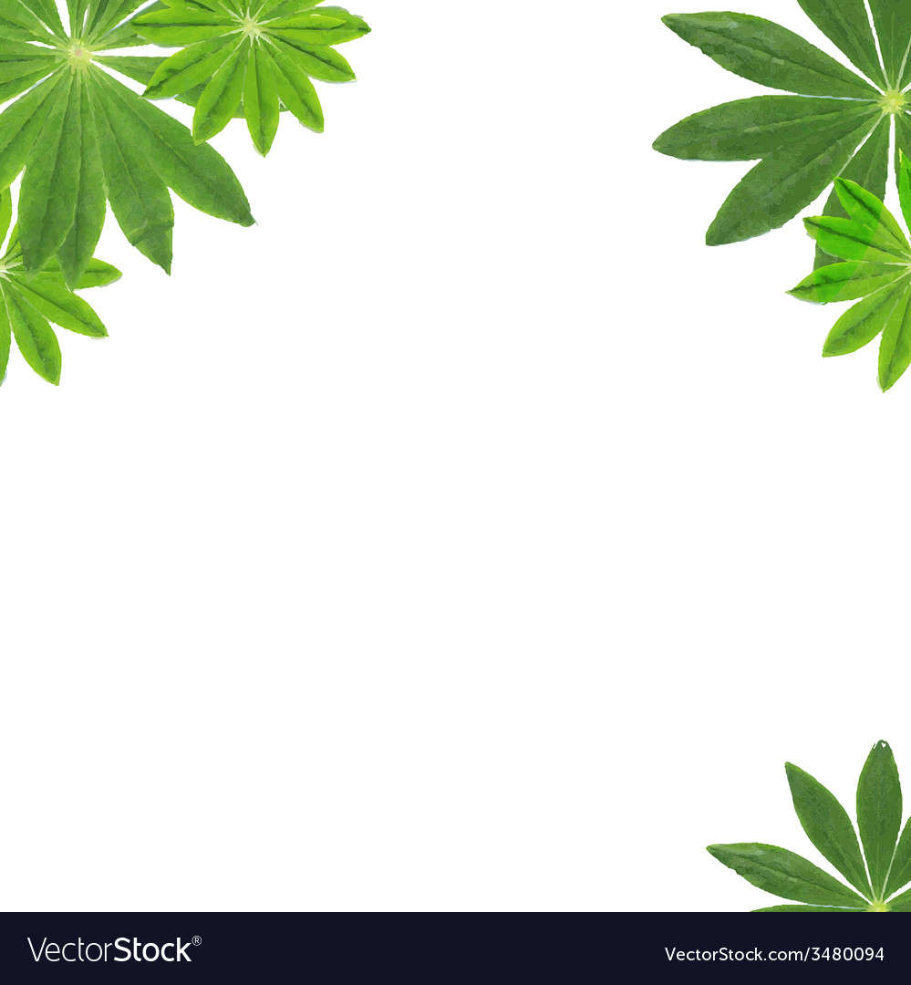 Green leaves frame vector | Price: 1 Credit (USD $1)