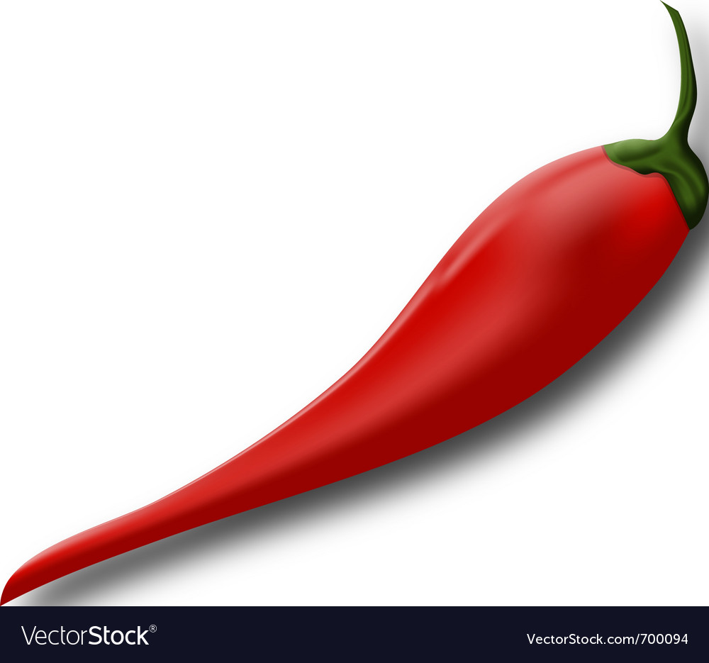 Red hot chili pepper vector | Price: 1 Credit (USD $1)