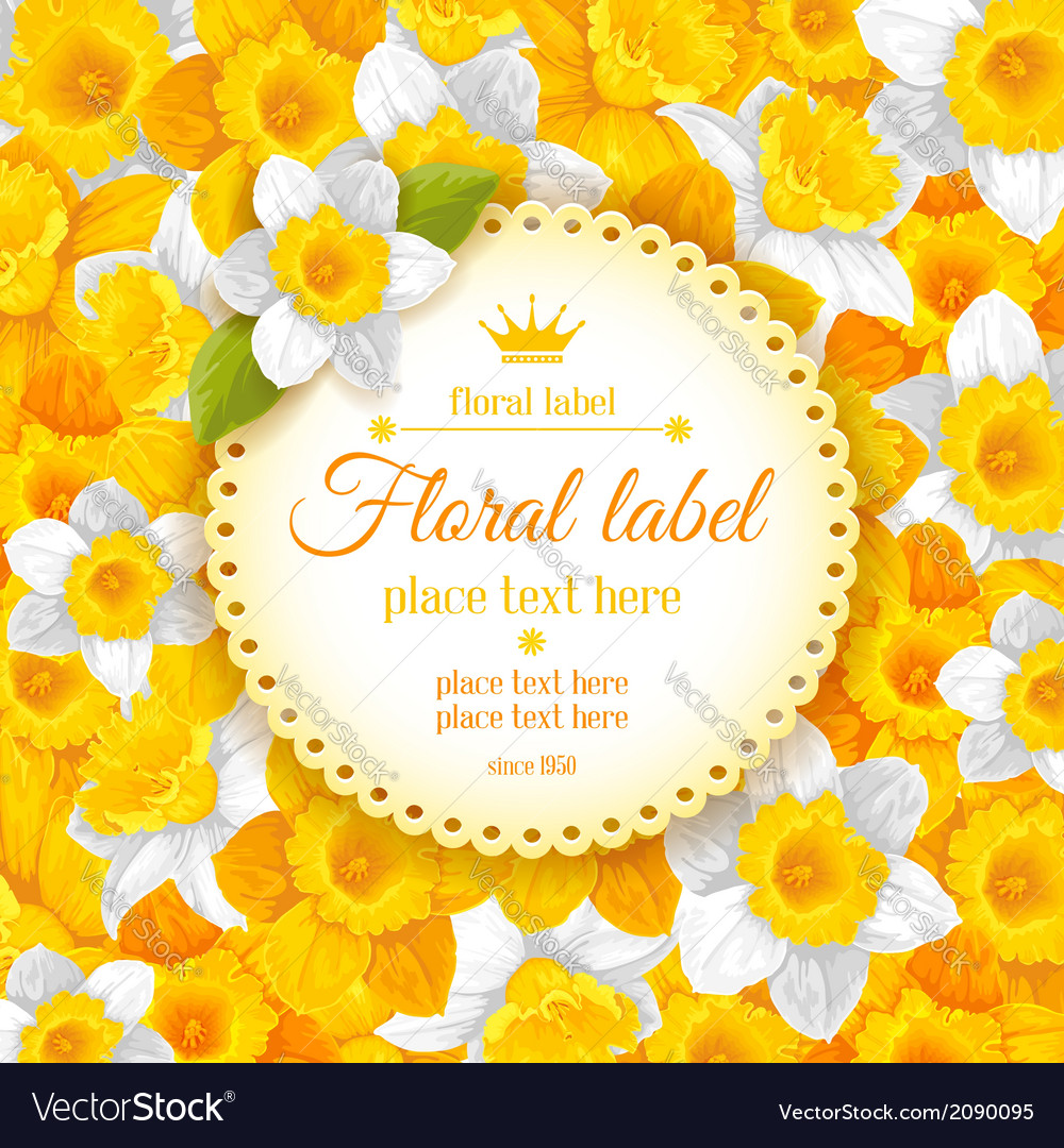 Daffodils background vector | Price: 1 Credit (USD $1)
