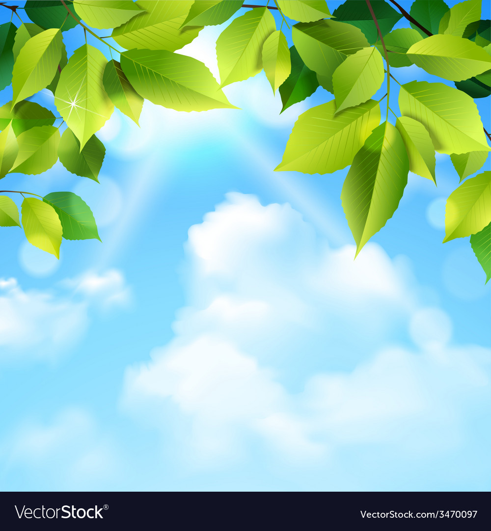 Clouds and leaves background vector   Price: 1 Credit (USD $1)