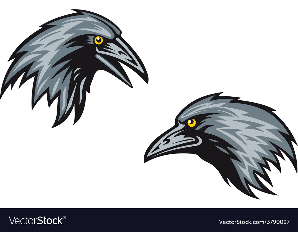 Heads of two blackbirds or ravens vector | Price: 1 Credit (USD $1)