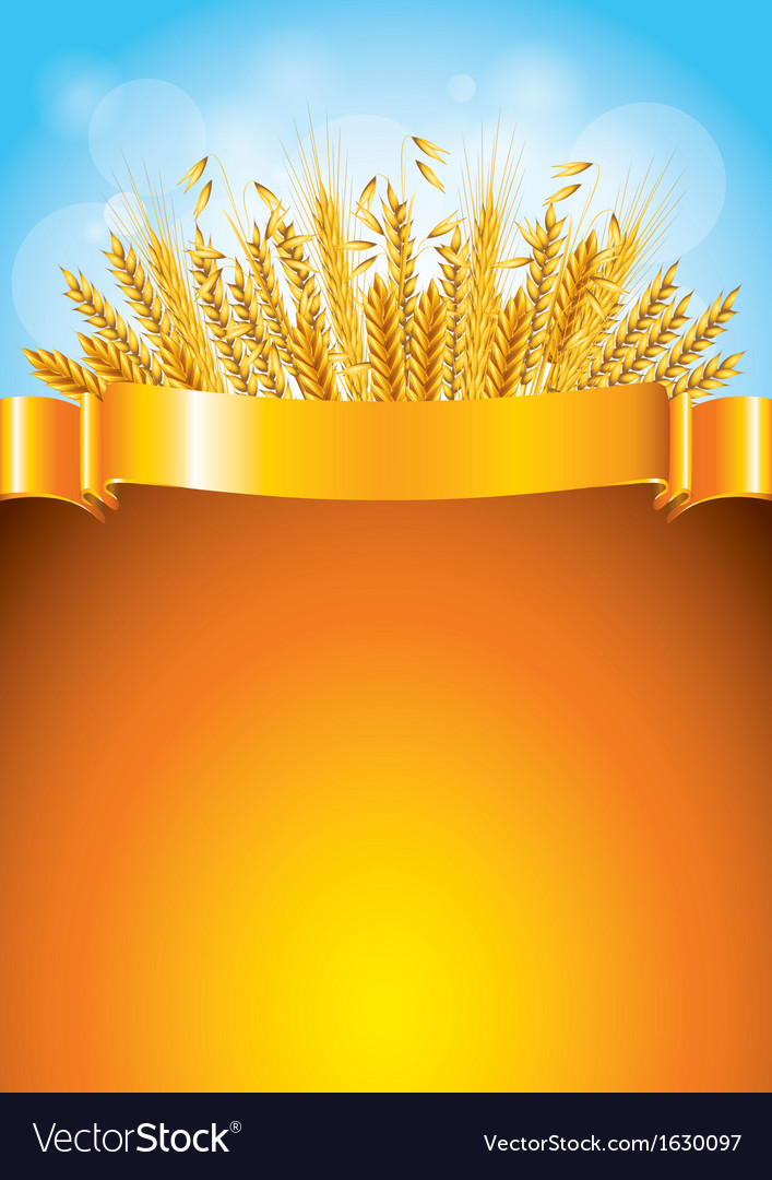 Wheat golden background vector | Price: 1 Credit (USD $1)