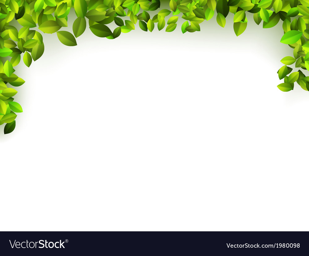 Natural green background  eps10 vector | Price: 1 Credit (USD $1)