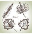 Hand drawn leaf set vector