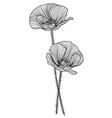 Decorative poppies vector