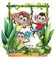 Three monkeys playing vector