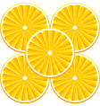 Background with citrus-fruits vector