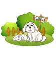 A backyard with two cute dogs vector