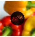 Realistic food background of red and yellow vector