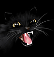 Evil black cat halloween background vector