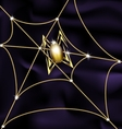 Jewel spider and web vector