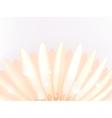 Water drops on elegant gerbera petals plus eps10 vector