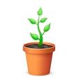The flowerpot vector