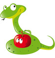 Snake and apple vector