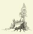 Birch tree around stump vector