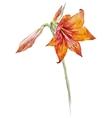 Watercolor lotus flowers vector