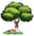 Dog under tree vector