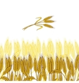 Background with ripe yellow wheat ears vector
