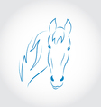 Hand drawn head horse vector