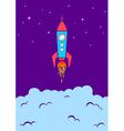 Rocket new vector