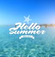 Summer holiday - type design vector