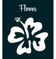 Hawaii flower vector
