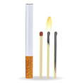 Cigarette and matches vector