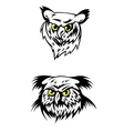 Two fierce looking owls with yellow eyes vector