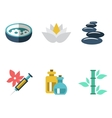 Various spa icons vector