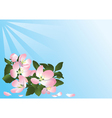 Blue card with flowers of apple tree vector