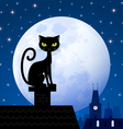 Black cat and moon vector