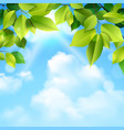 Clouds and leaves background vector