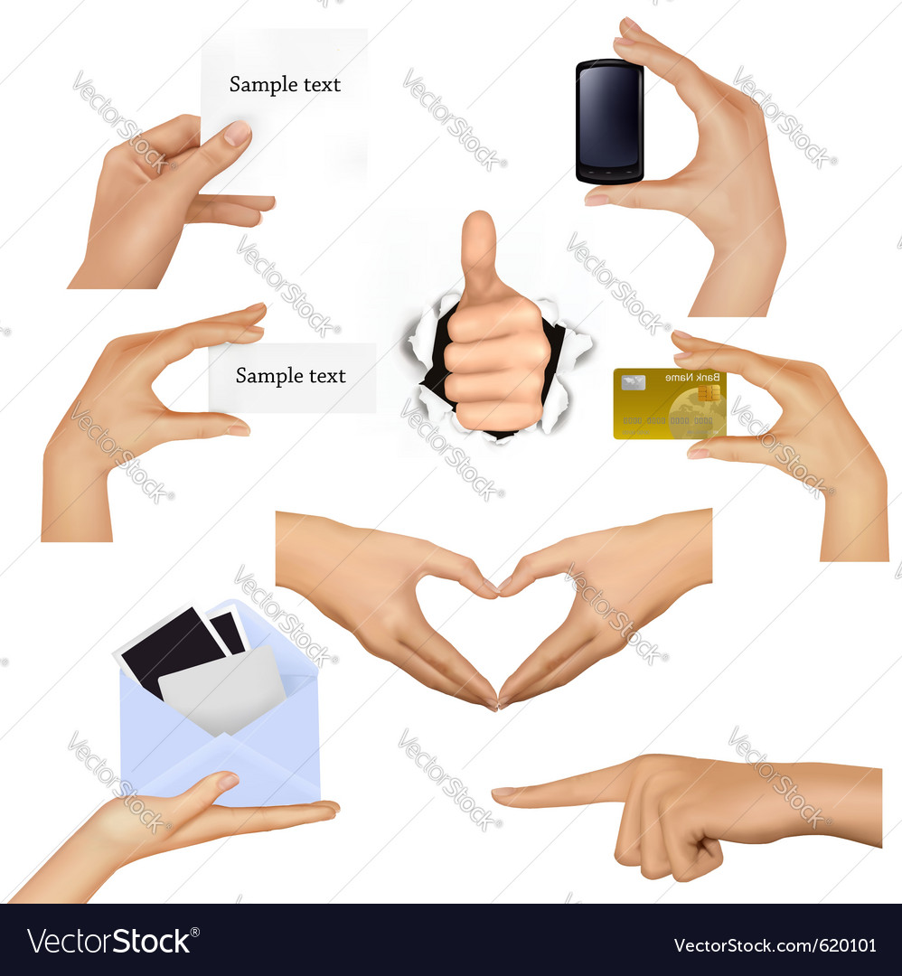 Hands holding business objects vector | Price: 3 Credit (USD $3)
