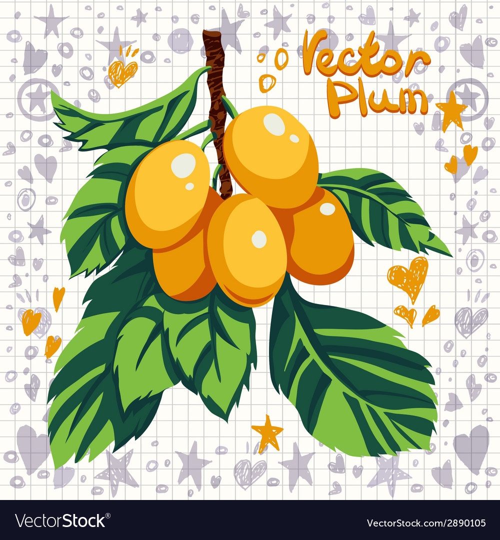 Fresh yellow plums with leaves vector | Price: 1 Credit (USD $1)
